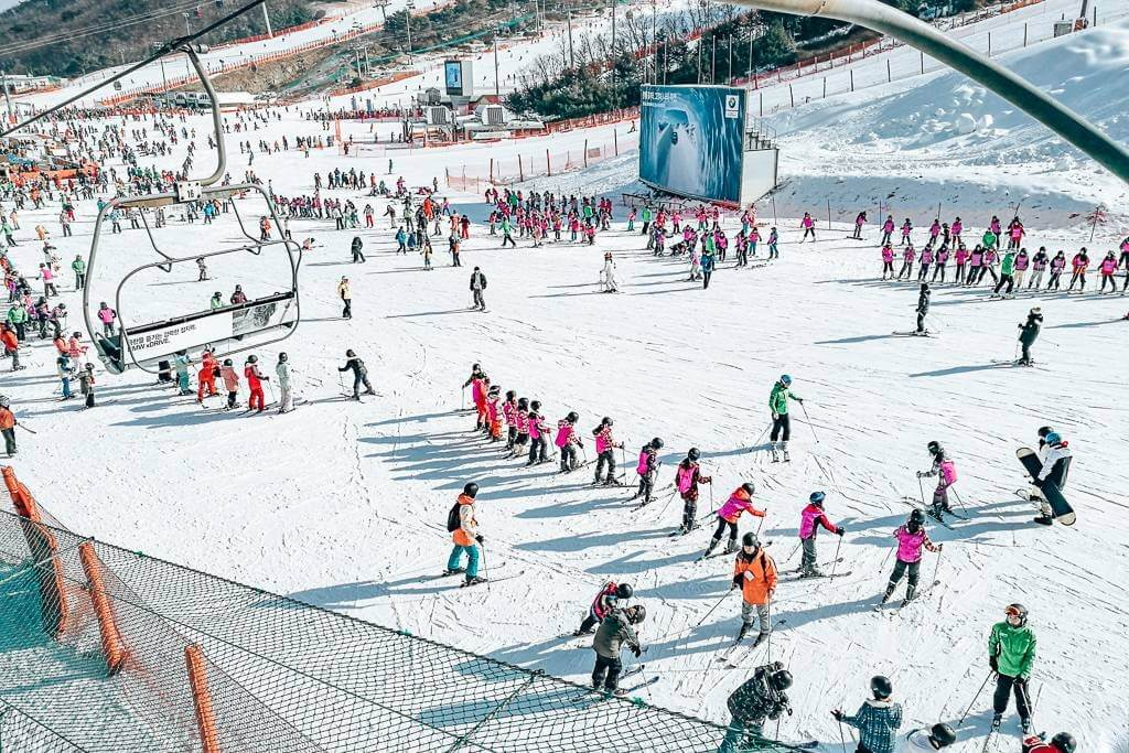 The beginners slope at Vivaldi – busy and crowded!