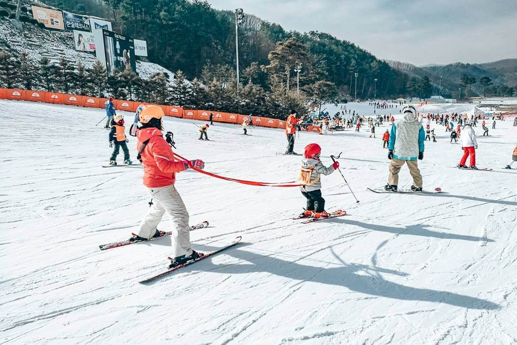 Watching the little kids learn to ski in Korea