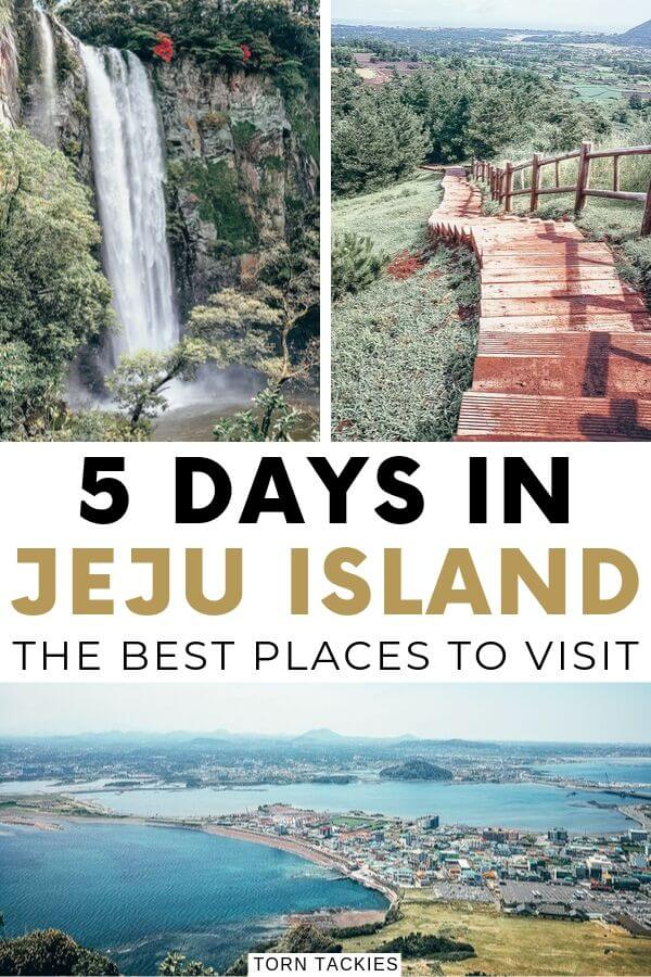 5 Days in Jeju Island, South Korea - Torn Tackies Travel Blog