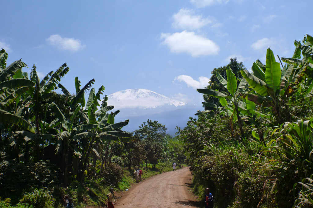 How much does it cost to climb Mt Kilimanjaro?