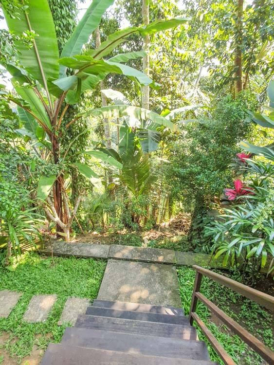 Secluded Jungle Villa in Ubud