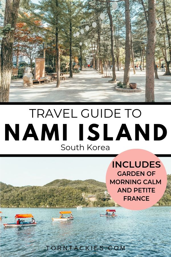 Travel Guide to Nami Island in South Korea