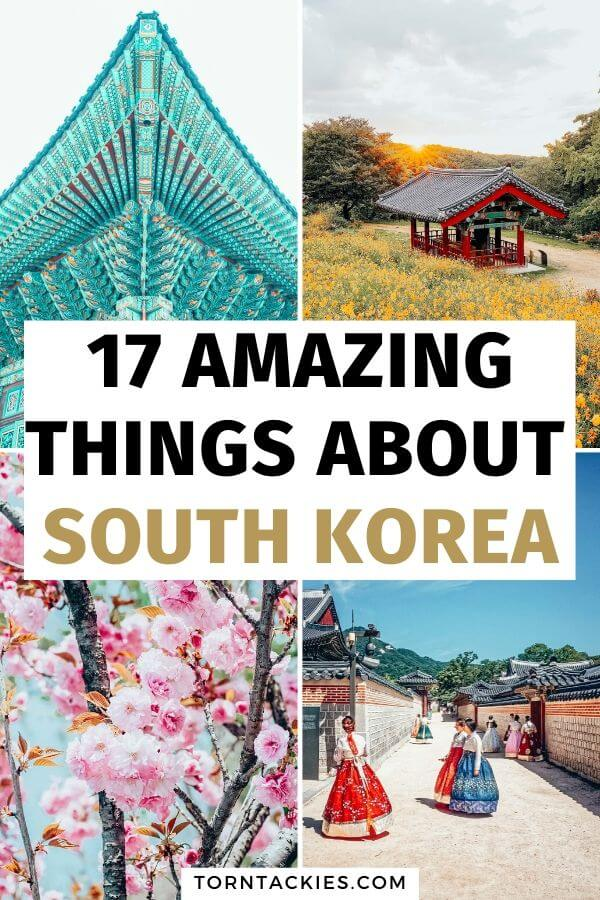 Here are 17 reasons why South Korea should be next on your travel itinerary