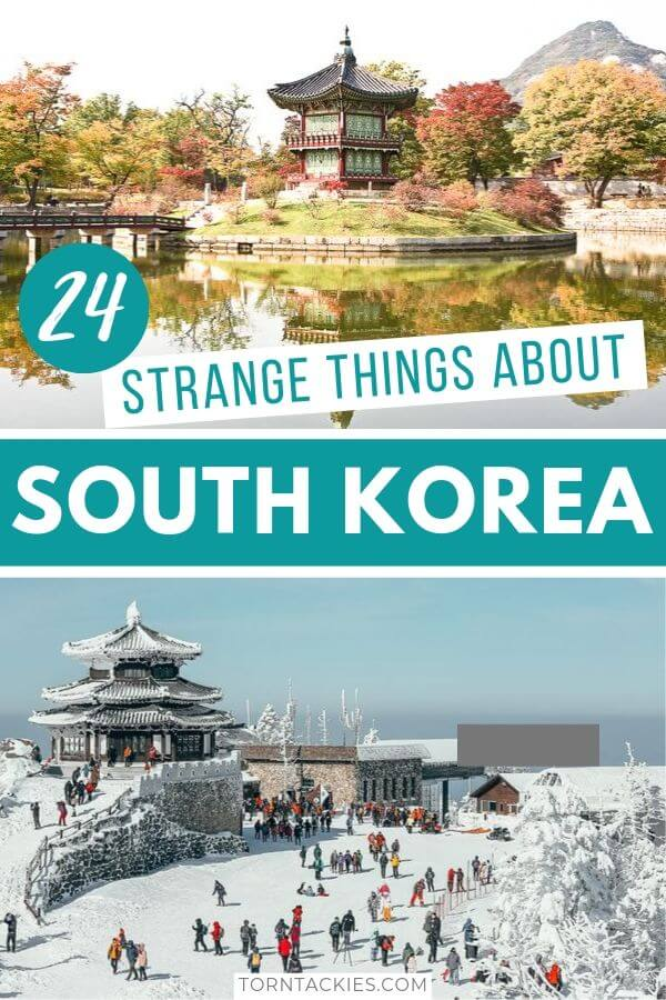24 Strange Things About South Korea - Torn Tackies