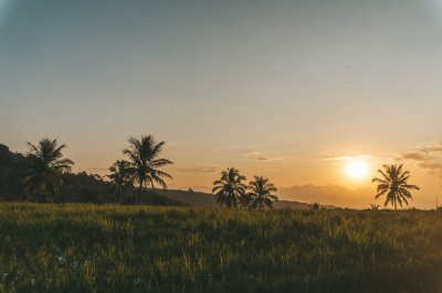 Some of the best things to do in Munduk, Bali