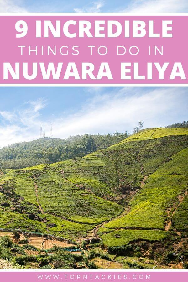 Things to do in Nuwara Eliya, Sri Lanka - Torn Tackies Travel Blog