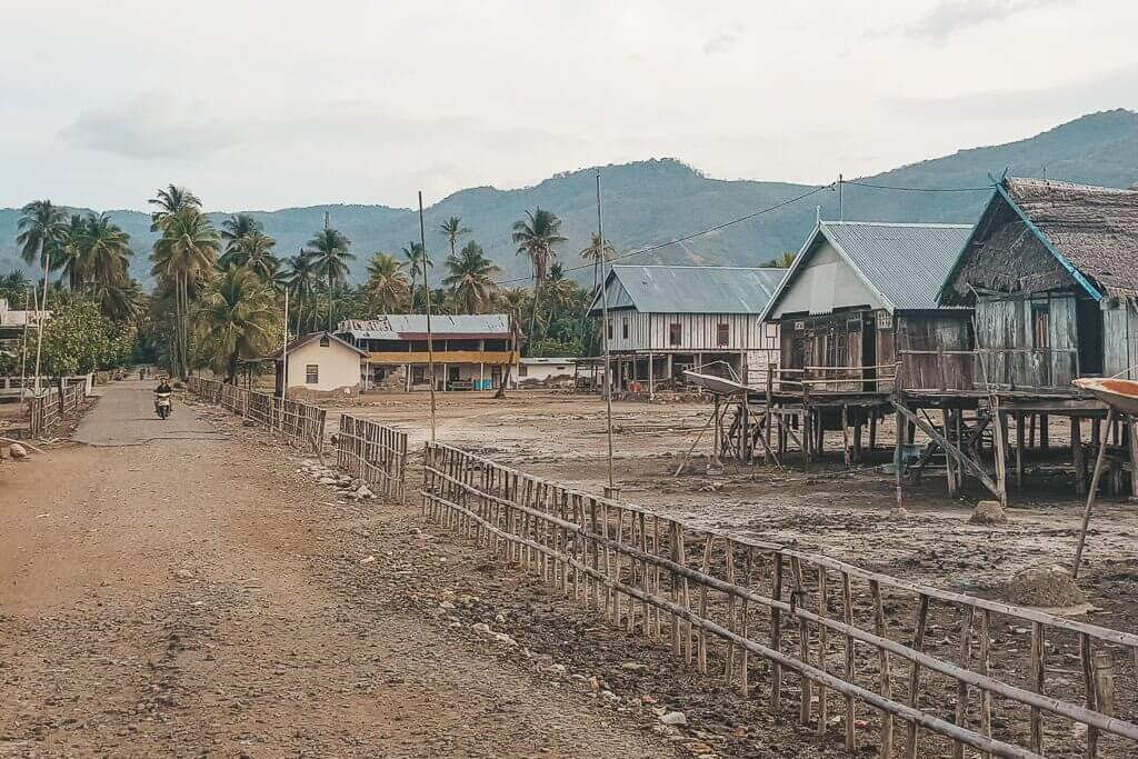The main road in Riung is lined with palm trees and houses built on stilts