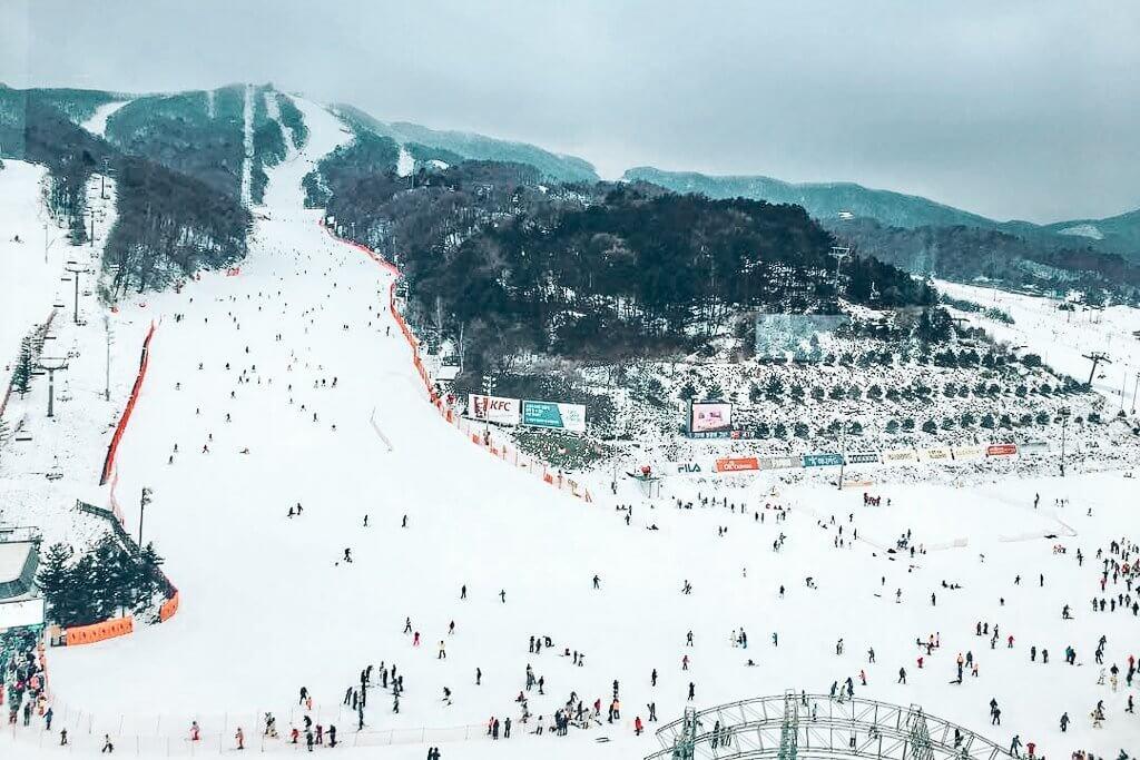 Phoenix Ski Park in Korea