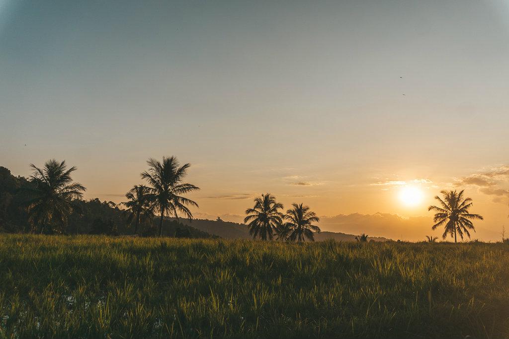 off the beaten track Bali - Munduk