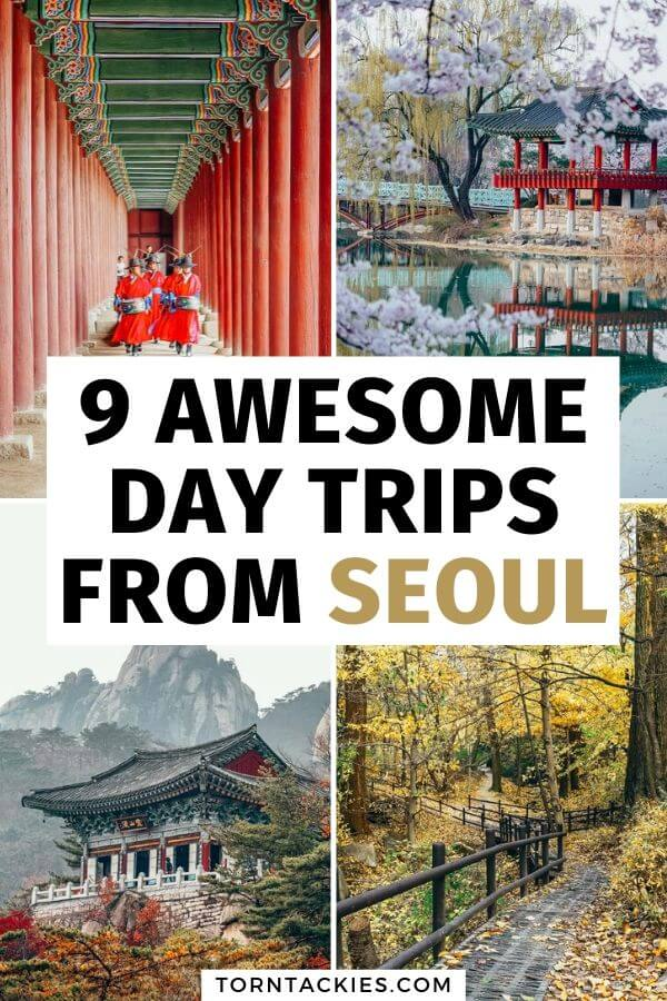 Best Day Trips From Seoul South Korea - Torn Tackies Travel Blog