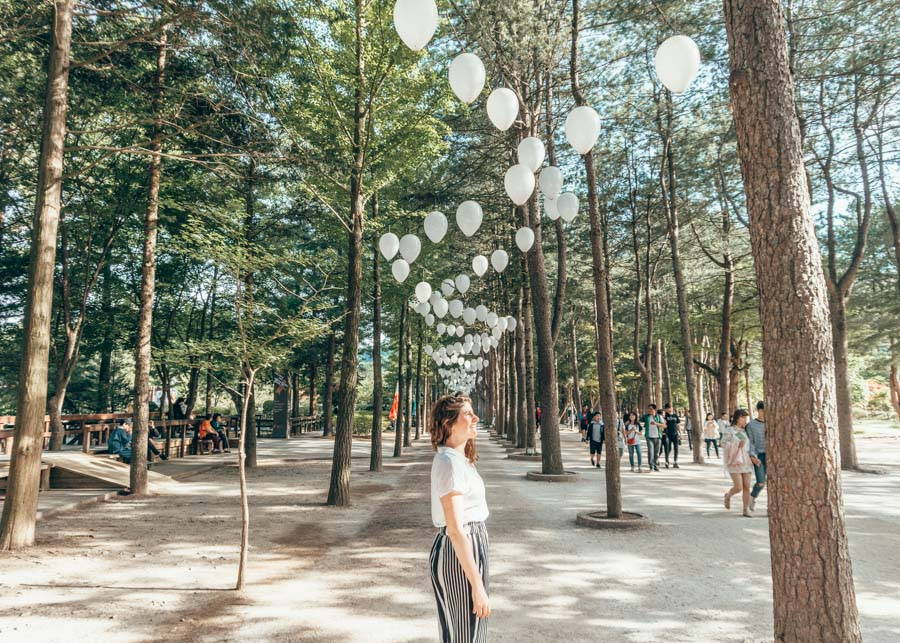 Nami Island is a must visit on any 7 day itinerary in Seoul