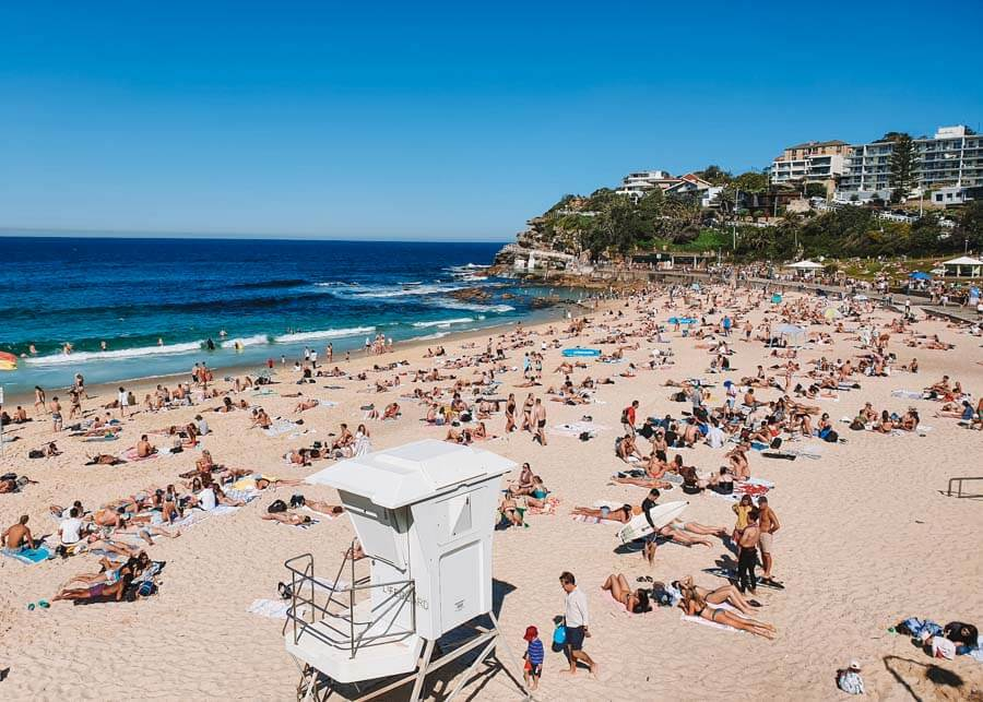 Bronte to Bondi Walk