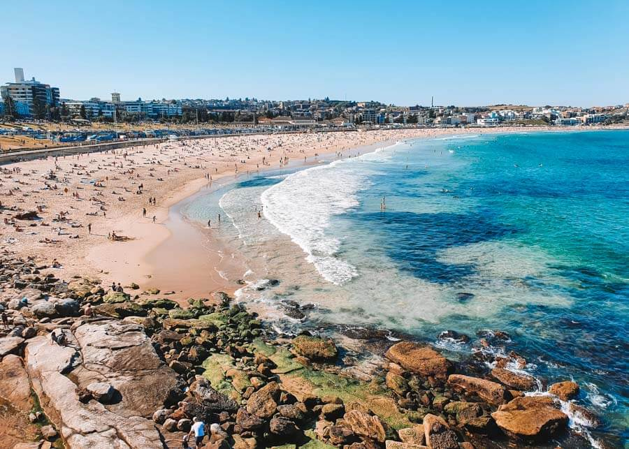 THE COOGEE TO BONDI WALK THE ULTIMATE GUIDE TO THE BONDI COASTAL WALK