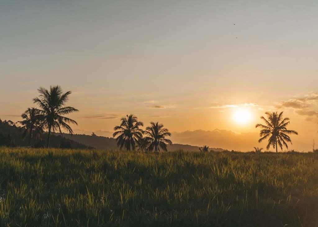 Munduk Bali itinerary